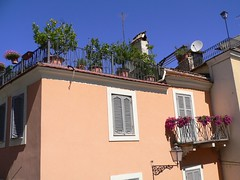 Anagni (Fr) - Lemons on Terrace (Luigi Strano) Tags: italien italy travels holidays europa europe italia trips italie vacanze lazio anagni frosinone latium ciociaria 5photosaday
