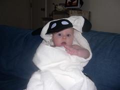 DSCN1355 (2tberrys) Tags: towels hoodedtowels crittersbychris