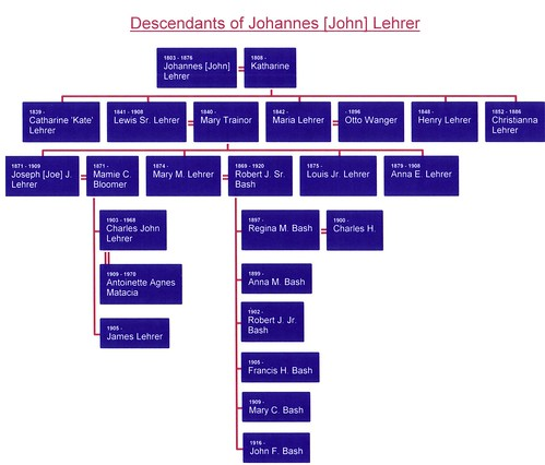Johannes Lehrer Family Tree-partial