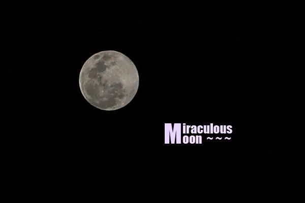 大滿月 -01.jpg