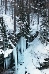 (kristicchia) Tags: winter snow ice neve inverno gmt ghiaccio kristicchia