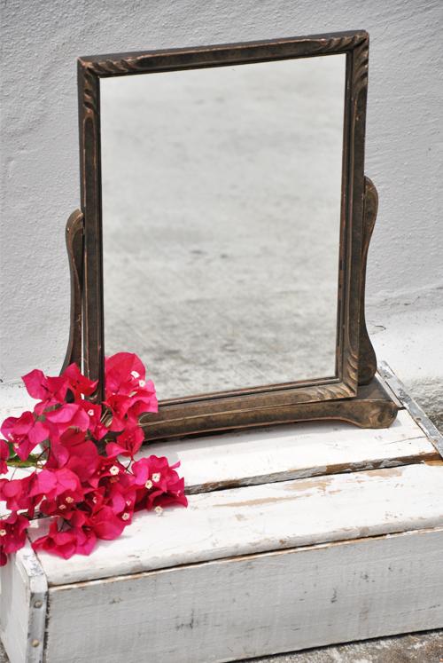 Swing-Mirror