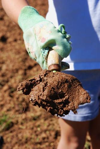 Rich soil