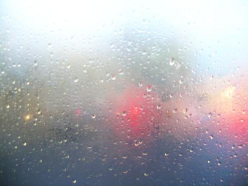 Through the Bus Window