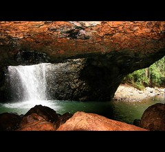 Natural Bridge (whoops vision) Tags: trees sunlight nature water waterfall rainforest rocks naturalbridge cave soe springbrook goldcoasthinterland springbrooknationalpark aplusphoto numinbahvalley