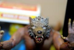 Oh No! Werewolf!