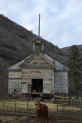 Old schoolhouse (?) now a barn