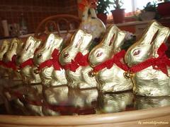 Sa pornim la vanatoare (Aly D.) Tags: easter chocolate romania rabbits bucharest lapin bucuresti paques pasti ciocolata pati iepuri