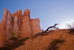 (ScarletFaerie (K. Wood Photography)) Tags: light sun rock utah geology brycecanyon soe brycecanyonnationalpark abigfave goldstaraward