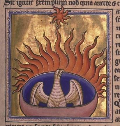 6- Folio 56r detalle -Ave Fenix- © Aberdeen University Library