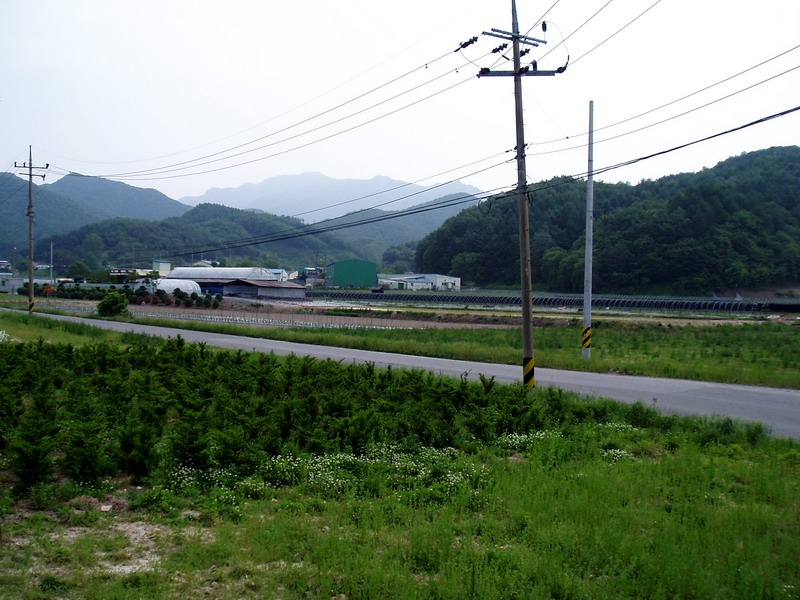 South Chungcheong(5)