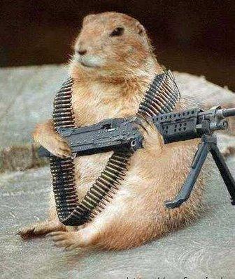 Hamster Militia