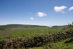 展望台から湿原を見下ろす