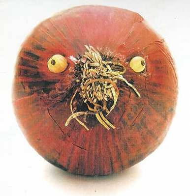 onion face