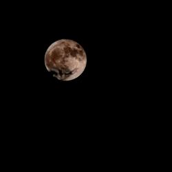 Moon HDR UL