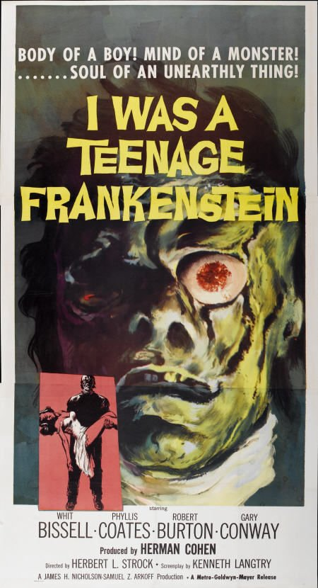 teenagefrank_poster
