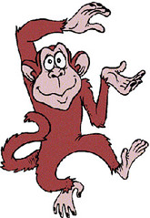 monkey__250363