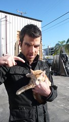 sylar and a cat