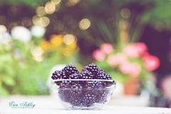 Bokeh-Berry-Licious