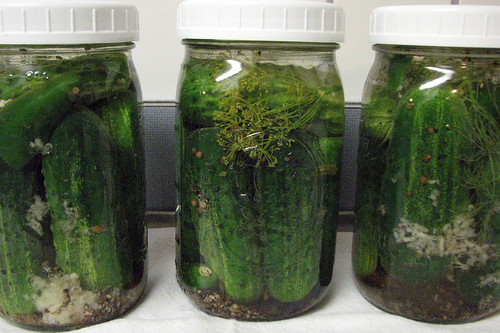 Pretty Jars of Pickles