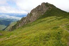 芦別岳山頂の手前のお花畑