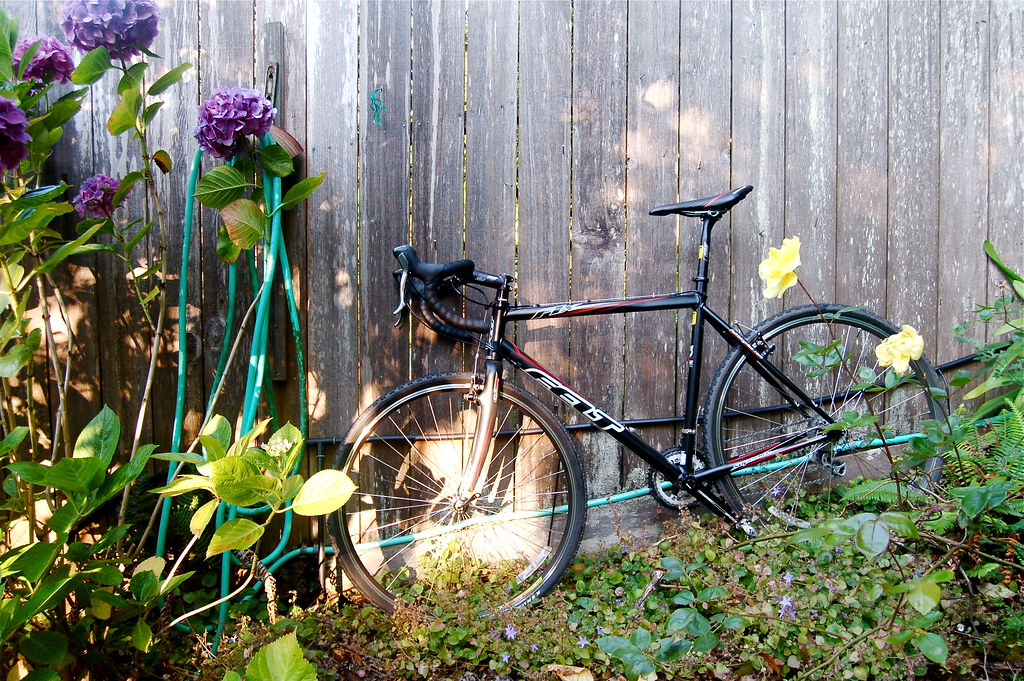 Still life: cyclocross bike with hydrangea