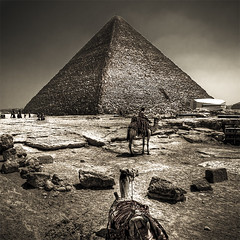 Giza Legends (Khaled A.K) Tags: raw pyramid egypt camel khaled giza hdr infinestyle kashkari
