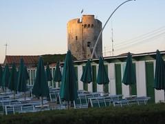 la torre. (scriptabanane) Tags: green tuscany toscana isoladelba