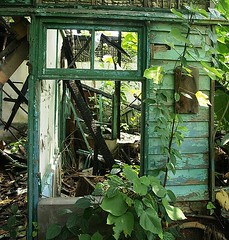Still Standing (squitten) Tags: house abandoned window nature military taiwan derelict smrgsbord