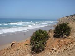 DSC03075 (metajungle) Tags: vacation morocco asilah