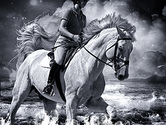 Dorset Hunter-Jumper: Ocean Dreams (Isabelle Ann) Tags: ocean horse art digital caballo cheval jumping vermont photographer digitalart dream explore fantasy isabelle cavallo cavalo pferd equine equus paard horseshows hunterjumper manchestervt dorsetvt equineart vermontsummerfestival isabelleann isabelleanngreen anawesomeshot equestrianart hunterjumpers dorsetsummerfestival brillianteyejewel equinephotographer hunterjumpershows artistichorse isabellegreen equitationart hunterjumperart dorsethorseshow hunterjumperphotography hunterjumprphotographer isabellegreenphotography isabelleannphotography isabelleannhorses mostbeautifulhorses equineartist hunterjumperphotographer hunterjumperphotograhy