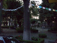 102_0214 (cas is king) Tags: df coyoacan cas