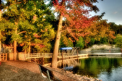 Finally, some fall color in Charlotte (krazyvshank) Tags: color fall nc nikon charlotte 1855 hdr d300