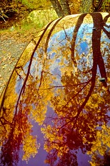 Reflections From Above (taylorkoa22) Tags: blue autumn trees sky color reflection fall colors leaves yellow reflections nikon colorful stream purple marcus gorgeous cambio change hood shooting limbs d300 marcgutierrez nm165