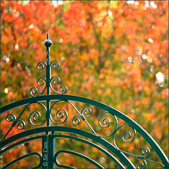 New Gate for University Botanic Garden (Sir Cam) Tags: autumn cambridge england gate university bokeh botanicgarden brookside sircam saundersbostonllp mackayengineering