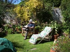 In an English suburban garden: Copyright 23rd October, 2008 Kevin & Jane Moor