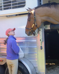 Patrick wants treats (Spoiledhorse) Tags: horses riding ridinglessons equestrian horsebackriding foxhunting foxhounds centralpennsylvania horsetrailers beauforthunt harvestviewstables juniorhunt