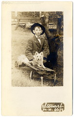 Best Friends: A Boy With His Dog On a Cart (c.1915) (postaletrice) Tags: old friends boy portrait usa dog chien pet amigos child retrato postcard united perro vintagepostcard postal states cart amis 1915 enfant nio amistad frienship amiti garon carretilla eeuu cartepostale charrette cpa muchacho tatsunis rppc tarjetapostal postalantigua