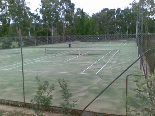 ANU grasscourts