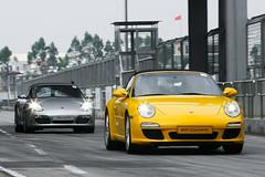 [フリー画像] [自動車] [スポーツカー] [ポルシェ/Porsche] [ポルシェ 911] [ポルシェ 911 カレラ] [ドイツ車]     [フリー素材]