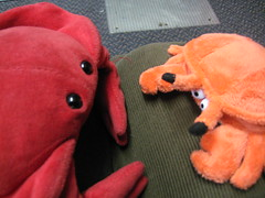Laura & Claude in London (44) (chicgeekuk) Tags: red laura animal toy crab plush claw abroad stuffedanimal seafood claude crabs crustacean claws kishimoto travellingtoys travellingtoy laurakishimoto laurakishimotoca claudeabroad
