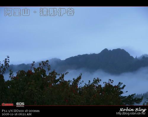 你拍攝的 20081116數位攝影_阿里山之旅009.jpg。
