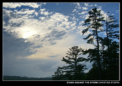 Stand Against the Storm (Kurokami) Tags: world life park new travel trees wild cloud ontario canada storm tree nature against pool true silhouette closeup pine female club clouds out landscape photography bay stand is check hit official all photographer personal cloudy photos pics head wildlife natureza great group parks silhouettes canadian best we daves national maybe soul killarney dreams come georgian why wilderness lovely miss discovery 31 thunder province geographic salve provincial traveler a hmom hmomw