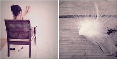 seren dip ity (honeypieLiving) Tags: light portrait white cat vintage lomo chair diptych feather deux simple dip fotografi lovelight morningmood onwood diptyk honeypieliving