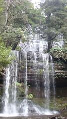 Waterfall, Russell Falls, Mount Field National Park, Tasmania, Australia (Annie MVN) Tags: waterfall australia tasmania 2008 russellfalls mountfieldnationalpark