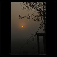 Sunrise over the Duffelt (Salland...) Tags: mist colors misty sunrise canon dark eos colours nebel sigma polder morgen ochtend mistig ooij kleuren nebelig 18200mm vroeg eralymorning duffelt zonsopkomt 1000d