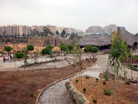 bioparc-zoo-valencia
