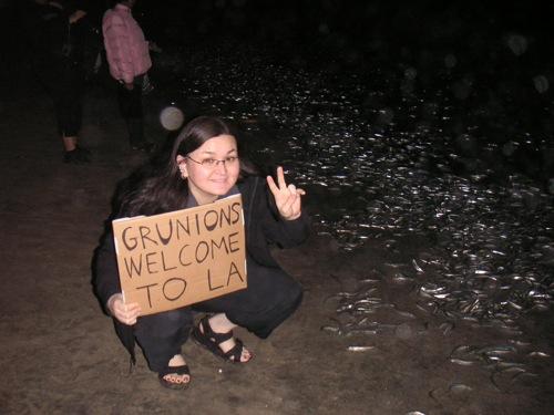 Grunion