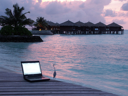 Photograph of a laptop computer on a tropical island