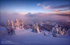 Frozen Misty Morning (Zack Schnepf) Tags: pink blue trees winter mountain snow mountains cold ice fog oregon sunrise landscape frozen purple threesisters dreamy zack brokentop southsister schnepf superaplus aplusphoto
